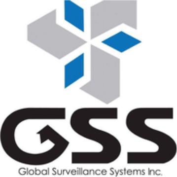 GSS (3.1x)